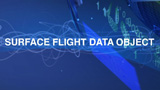 Surface Flight Data Object